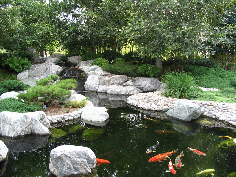 301 moved permanently for Koi pond zen